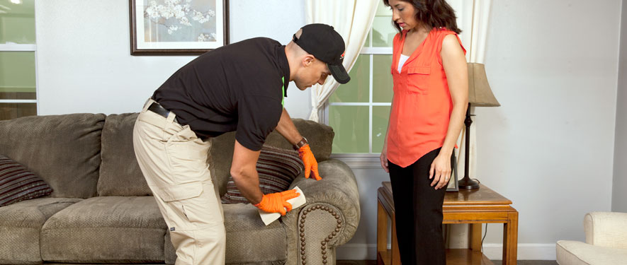 University Park, CA carpet upholstery cleaning
